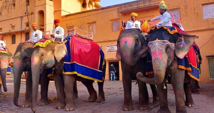 Golden Triangle Train Tour India